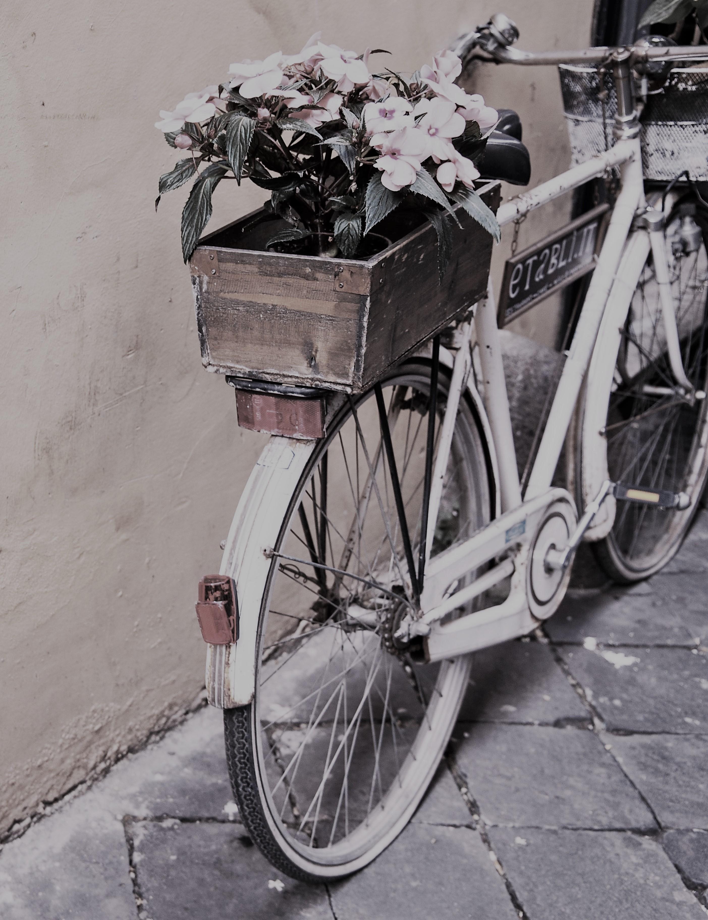 Chiner un vélo vintage pour le relooker en jardinière…